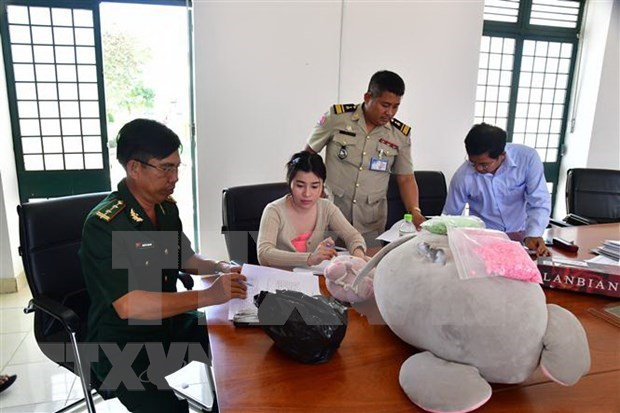 Woman arrested for smuggling 3,000 meth pills hinh anh 1
