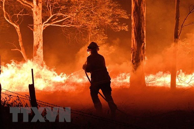Sympathies extended to Australia over wildfires hinh anh 1