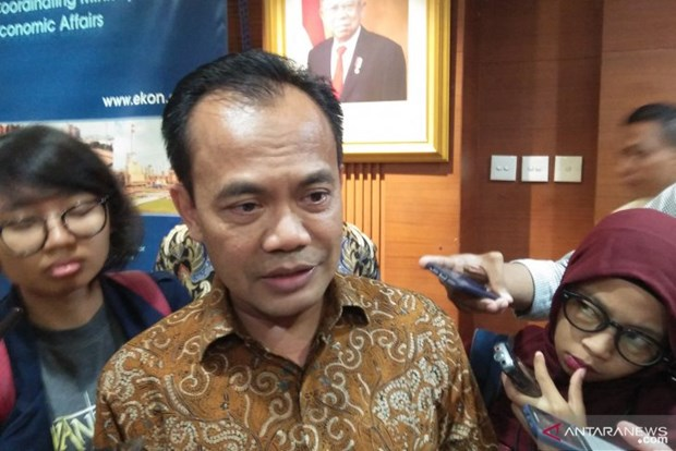 Indonesia aims to attract 6.4 billion USD in three SEZs hinh anh 1