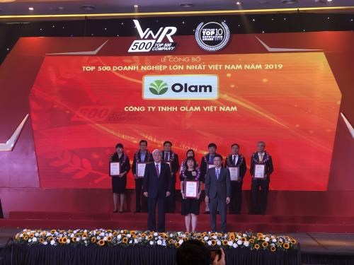 Vietnam's top 500 largest enterprises in 2019 announced hinh anh 1