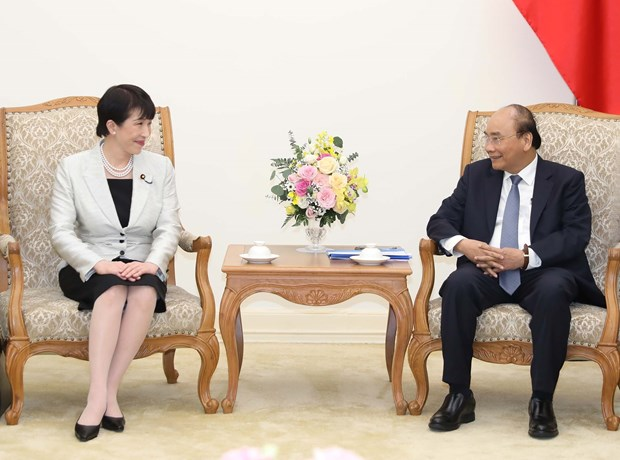 Vietnam wants to cooperate with Japan in developing e-government: PM hinh anh 1