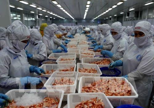 FTA to facilitate ASEAN – Hong Kong goods flow hinh anh 1