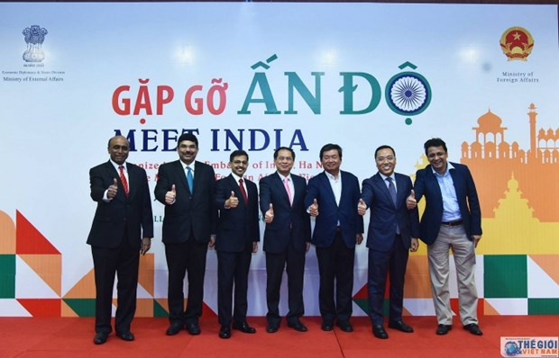 Workshop looks at Vietnam-India cooperation potential hinh anh 1