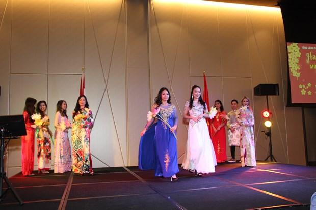 Overseas Vietnamese gather for Tet celebration hinh anh 1