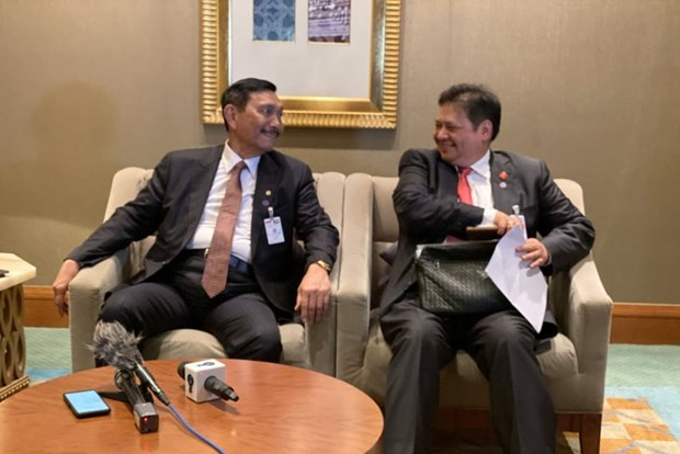 Indonesia, UAE sign 16 cooperation deals hinh anh 1