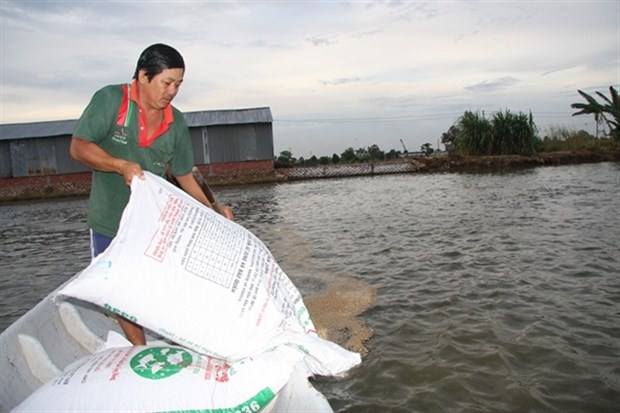 VN cracks down on use of banned substance in fish food hinh anh 1