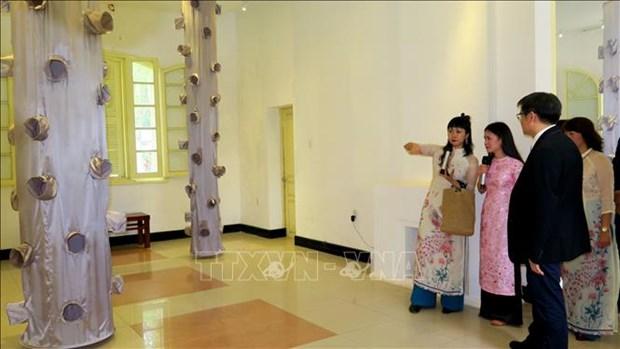 Exhibition spotlights Japanese installation art hinh anh 1