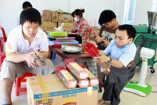 Da Nang AO/Dioxin victim association plans 10 bln VND in fundraising hinh anh 1