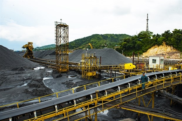 Vietnam increases coal, ore and mineral imports hinh anh 1