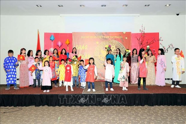Vietnamese embassies celebrate Lunar New Year festival hinh anh 1