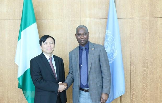 Ambassador discusses improving UN's operations hinh anh 1