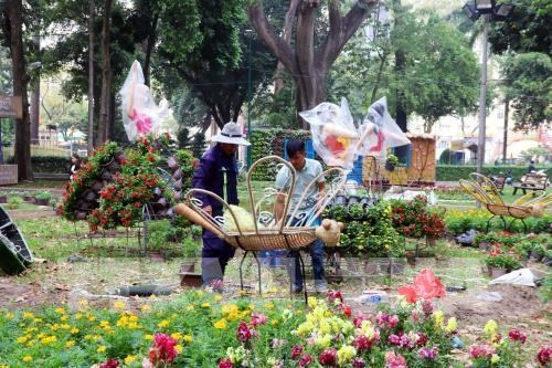HCM City gets busy with flower festivals, markets ahead of Tet hinh anh 1