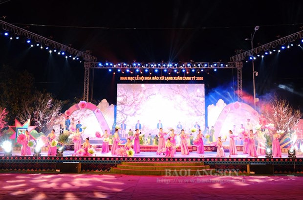 Peach blossom festival held in Lang Son hinh anh 1