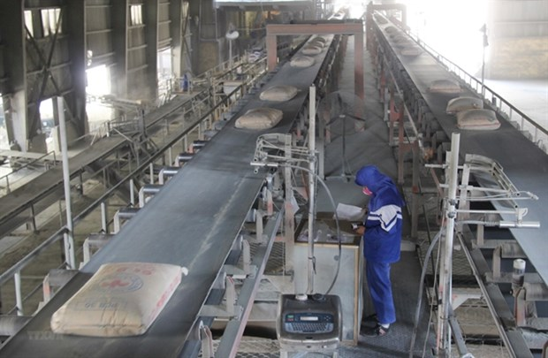 Maintaining exports critical to cement industry this year hinh anh 1