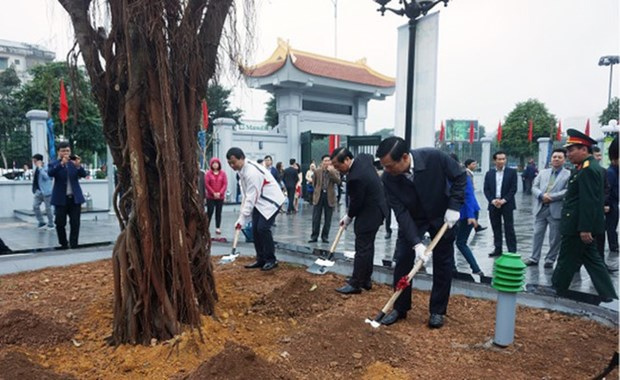 Hanoi to plant about 120,000 new trees this spring hinh anh 1