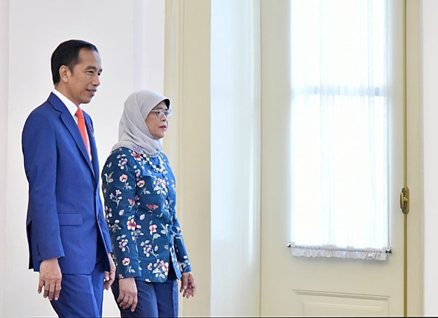 Indonesia, Singapore ink many important deals hinh anh 1