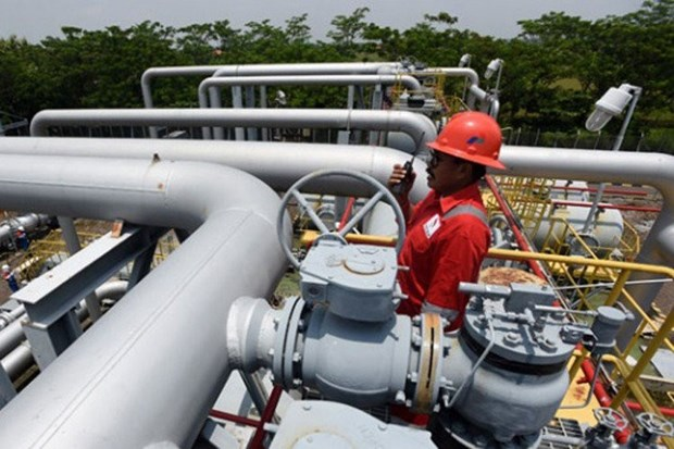 Indonesia starts work on 255km industrial gas pipeline hinh anh 1