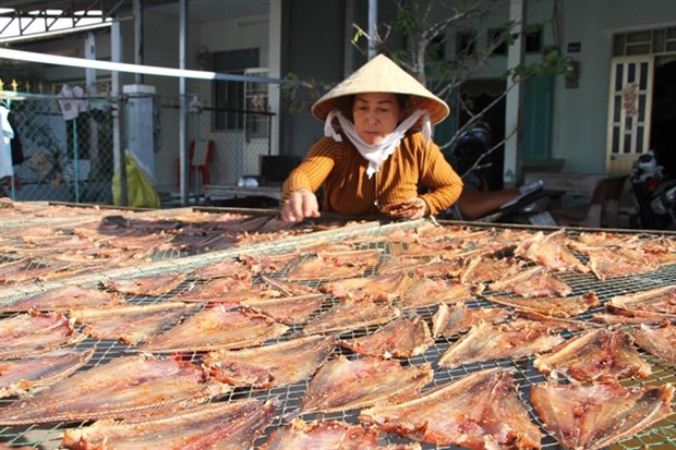 Soc Trang province's measures to get rid of poverty hinh anh 1
