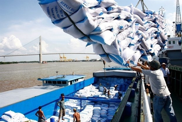 Vietnam sees rice export growth in January hinh anh 1