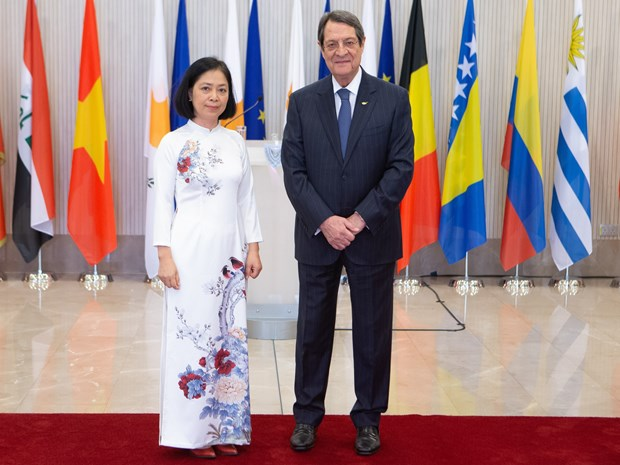 Vietnam treasures multifaceted ties with Cyprus: Ambassador hinh anh 1