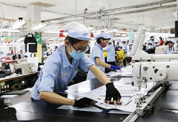 Vietnam's garment-textile expects boom in 2020 hinh anh 1
