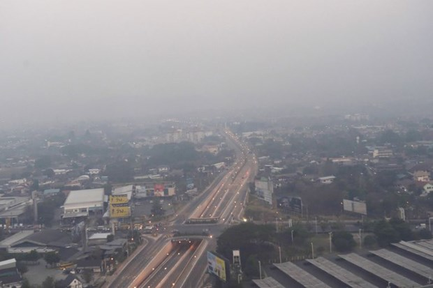 Thailand works to alleviate drought, smog problems in all areas hinh anh 1