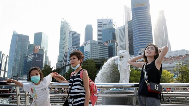Singapore: tourist arrivals projected to drop 25-30 percent hinh anh 1