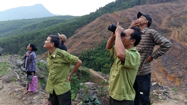 WWF-Vietnam, GreenViet work to protect endangered primates hinh anh 1