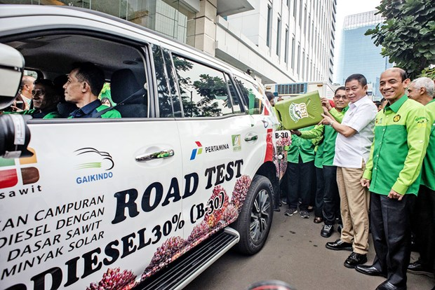 Indonesia to start trial use of 40 percent biodiesel in March hinh anh 1