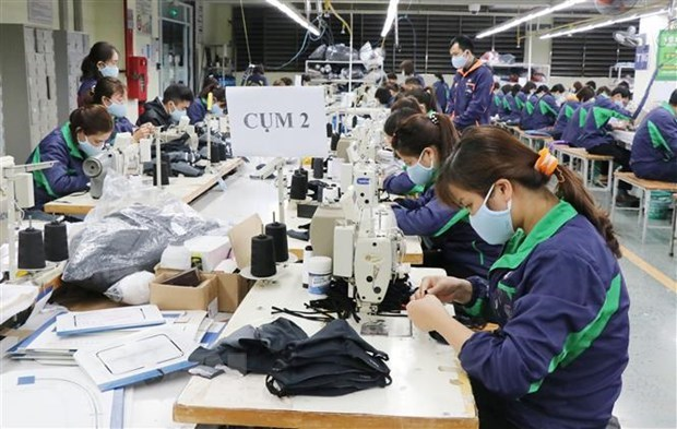 Textile, rubber-plastic brace for raw material shortage hinh anh 1
