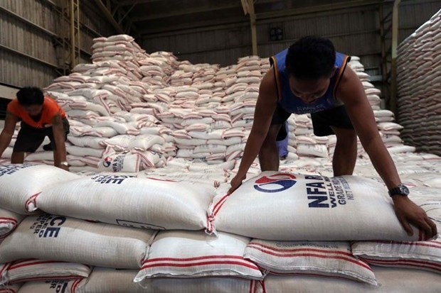 Philippines to remain largest rice importer in 2020 hinh anh 1
