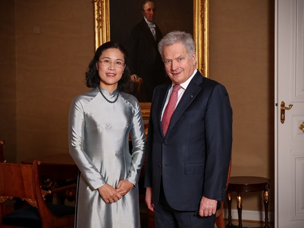 Vietnam treasures ties with Finland hinh anh 1