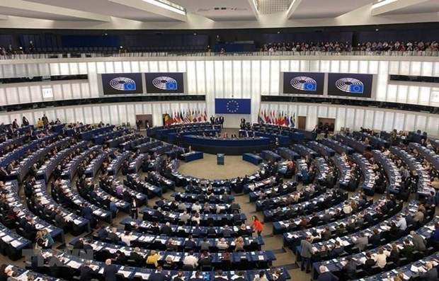 EP member welcomes ratification of EVFTA, EVIPA hinh anh 1