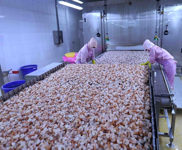 Gov't to issue lists of preferential tariffs under EVFTA hinh anh 1