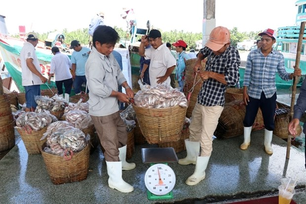 Kien Giang province unveils numerous measures to improve fishermen's lot hinh anh 1