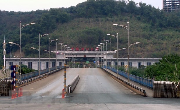 Imports, exports through Lao Cai border gates surge amid COVID-19 hinh anh 1