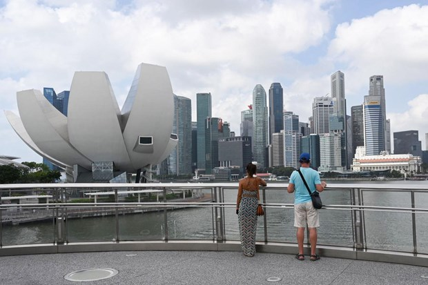 Singapore worries about looming recession due to COVID-19 hinh anh 1