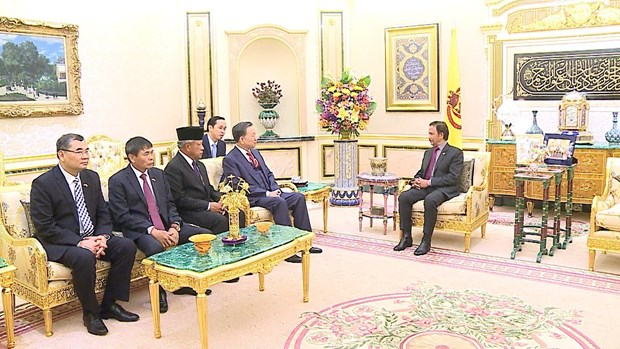 Public security minister pays courtesy call to Sultan of Brunei hinh anh 1