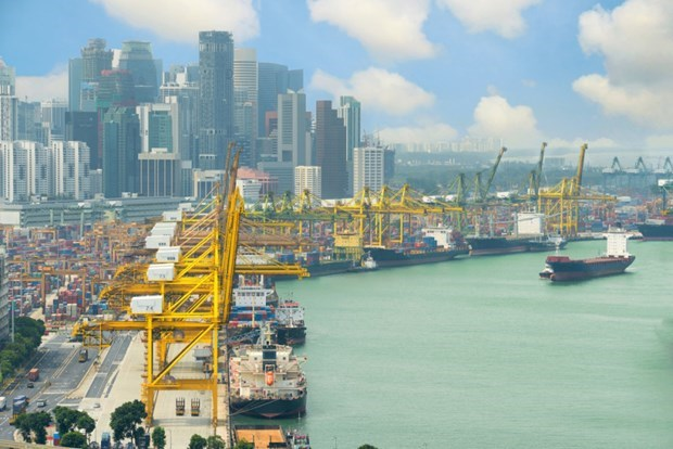 Singapore lowers GDP growth due to COVID-19 hinh anh 1