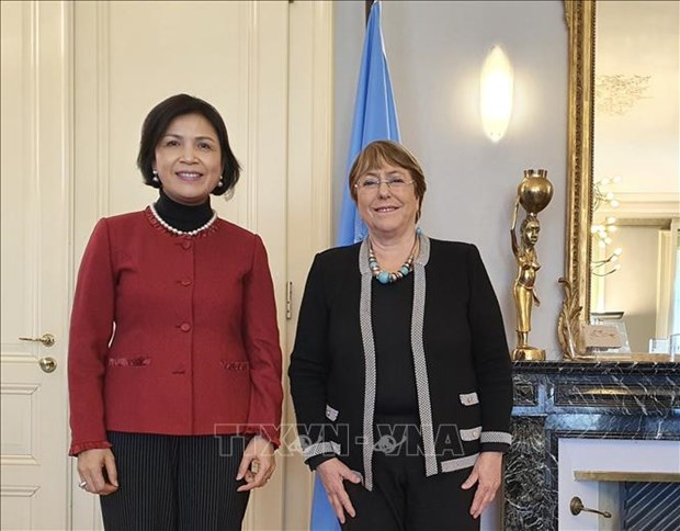 UN High Commissioner lauds Vietnam's human rights achievements hinh anh 1