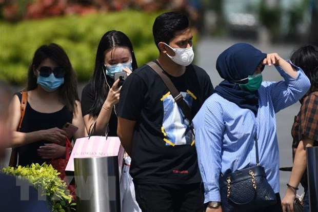 Singapore to spend 4.6 billion USD to fight virus hinh anh 1