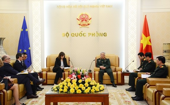 Vietnam invited to join EU training mission in Central Africa Republic hinh anh 1