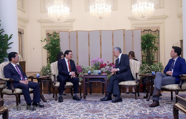 Singapore hopes to bolster multifaceted cooperation with Vietnam hinh anh 1