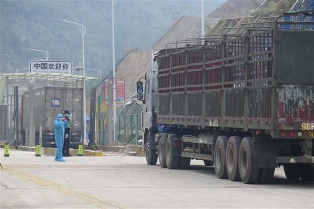 Tan Thanh border gate in Lang Son resumes operation hinh anh 1