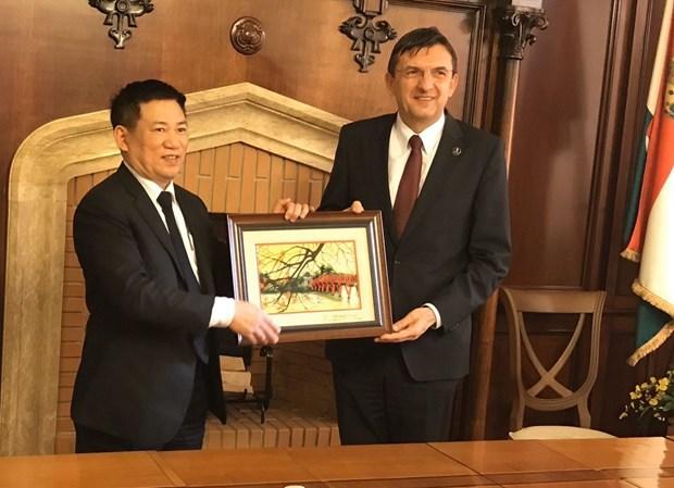 State Audit Office enhances cooperation with Hungarian counterpart hinh anh 1