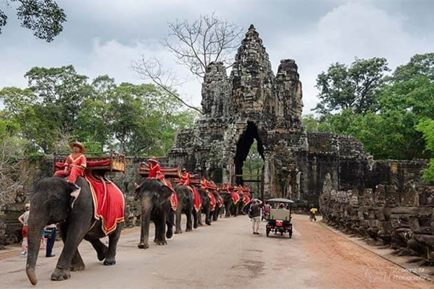 Cambodia extend foreigners' stay at Angkor park hinh anh 1