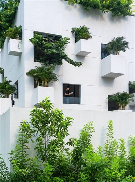 Architecture Community Awards honours Sky House hinh anh 1