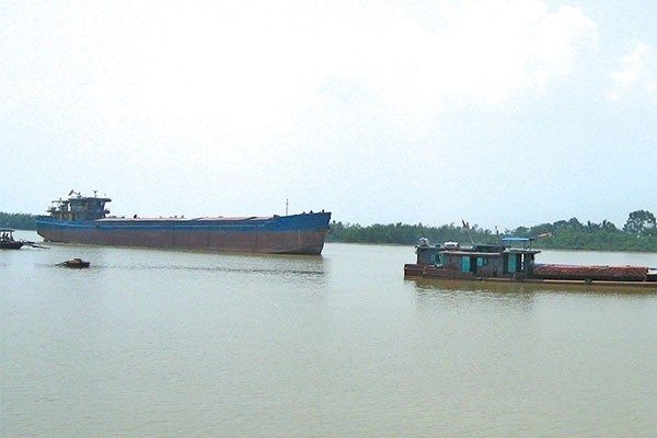 Management of coastal shipping remains low par: conference hinh anh 1