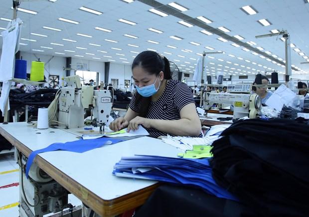 Apparel, footwear enterprises seek material supplies amid COVID-19 hinh anh 1
