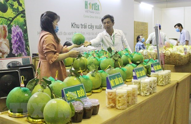 Horticultural, floricultural production technology exhibition opens hinh anh 1